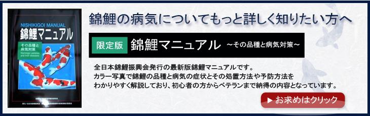 錦鯉マニュアル