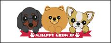 チワワ、ポメラニアン、ダックスフントのブリーダーエム.ハッピーグロウ犬舎